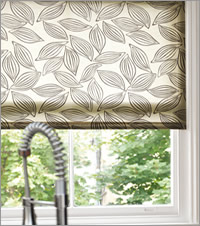 Contemporary Brown Roller Blind